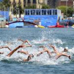 nage_en_eau_libre